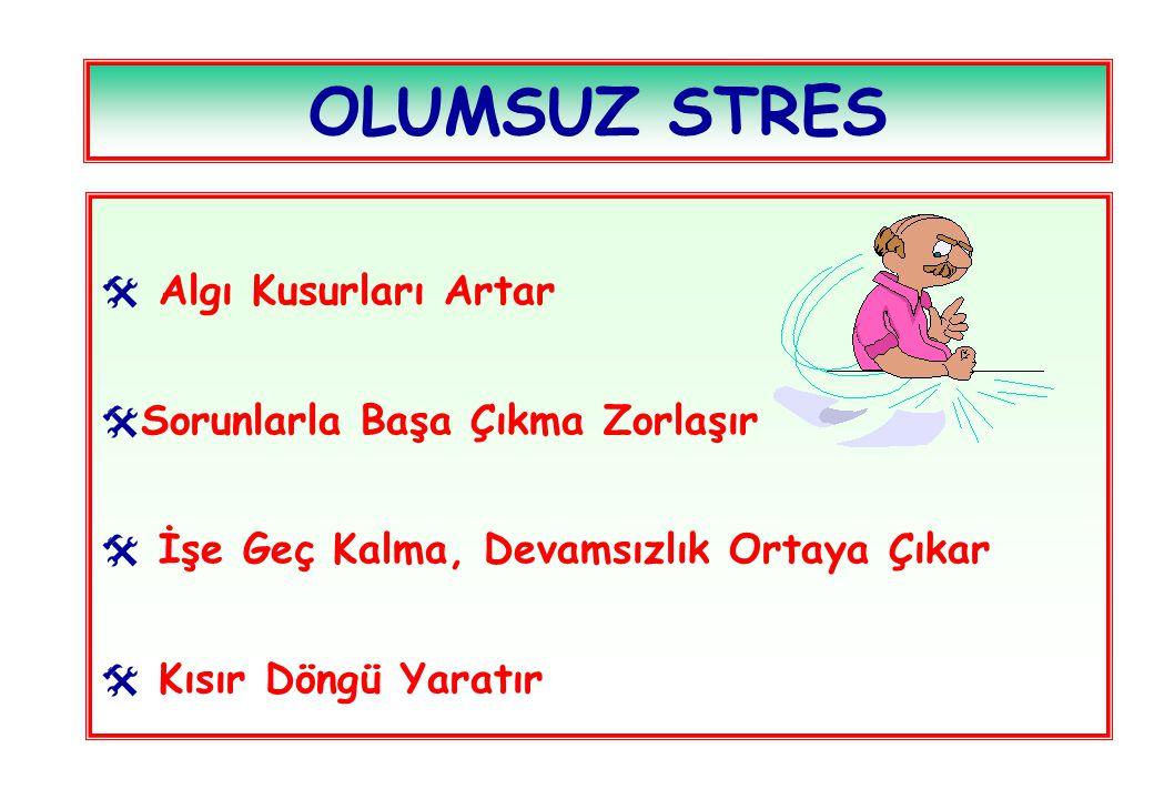 OLUMSUZ STRES  Algı Kusurları Artar  Sorunlarla Başa Çıkma Zorlaşır  İşe Geç Kalma, Devamsızlık Ortaya Çıkar  Kısır Döngü Yaratır