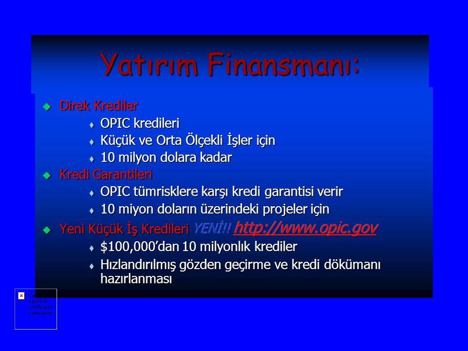 Yatırım Finansmanı: