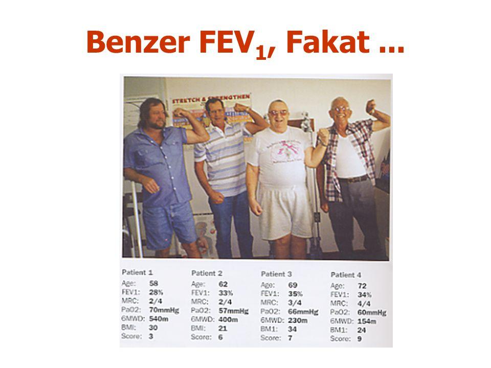 Benzer FEV 1, Fakat...