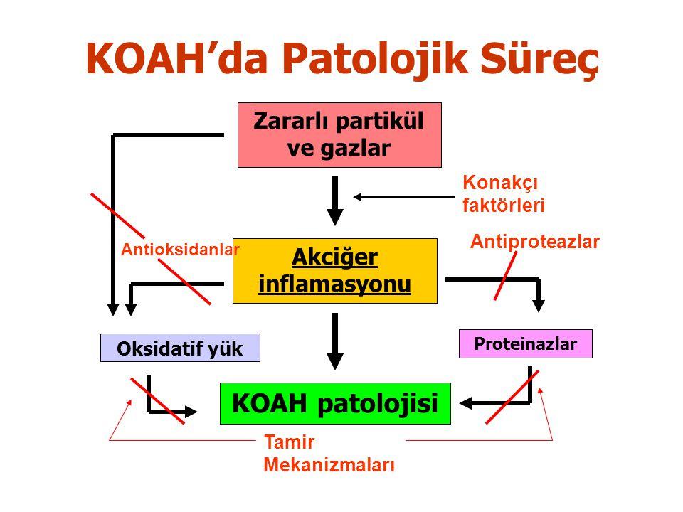 Zararlı partikül ve gazlar Akciğer inflamasyonu KOAH patolojisi Konakçı faktörleri Proteinazlar Oksidatif yük Antioksidanlar Antiproteazlar Tamir Mekanizmaları KOAH'da Patolojik Süreç
