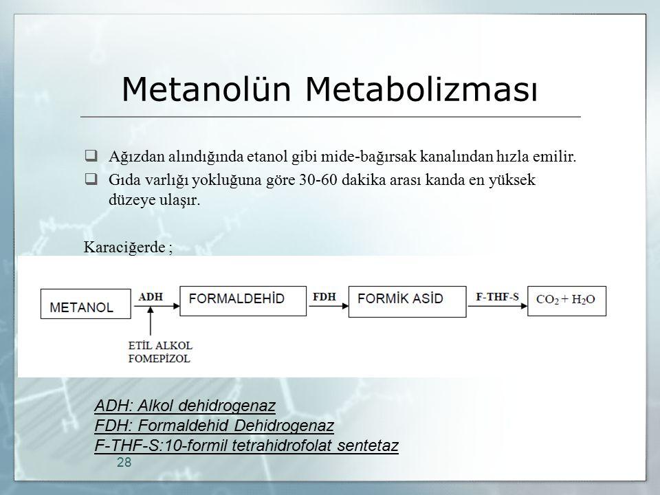 Metanolün Metabolizması  Ağızdan alındığında etanol gibi mide-bağırsak kanalından hızla emilir.  Gıda varlığı yokluğuna göre 30-60 dakika arası kand