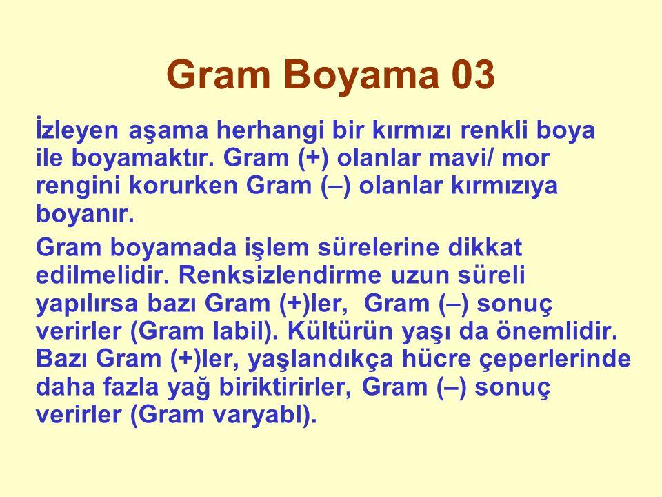 Gram Boyama 03 İzleyen aşama herhangi bir kırmızı renkli boya ile boyamaktır. Gram (+) olanlar mavi/ mor rengini korurken Gram (–) olanlar kırmızıya b