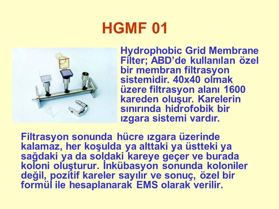 HGMF 02 1600 karenin her birinin alanı yaklaşık 1,5 mm 2 olup, aynı kareye birden fazla canlı hücre düşerse fark edilmesi mümkün değildir.