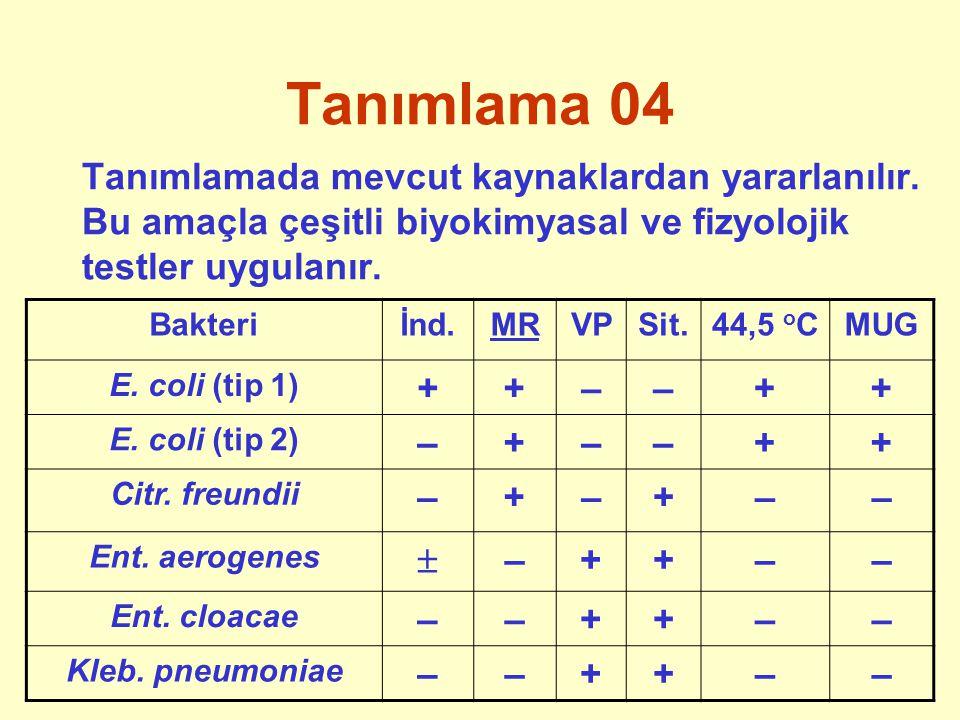 Tanımlama 04 Tanımlamada mevcut kaynaklardan yararlanılır. Bu amaçla çeşitli biyokimyasal ve fizyolojik testler uygulanır. Bakteriİnd.MRVPSit.44,5 o C