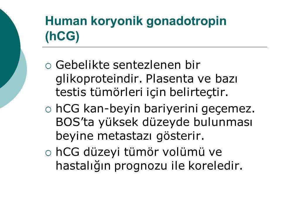 Human koryonik gonadotropin (hCG)  Gebelikte sentezlenen bir glikoproteindir.