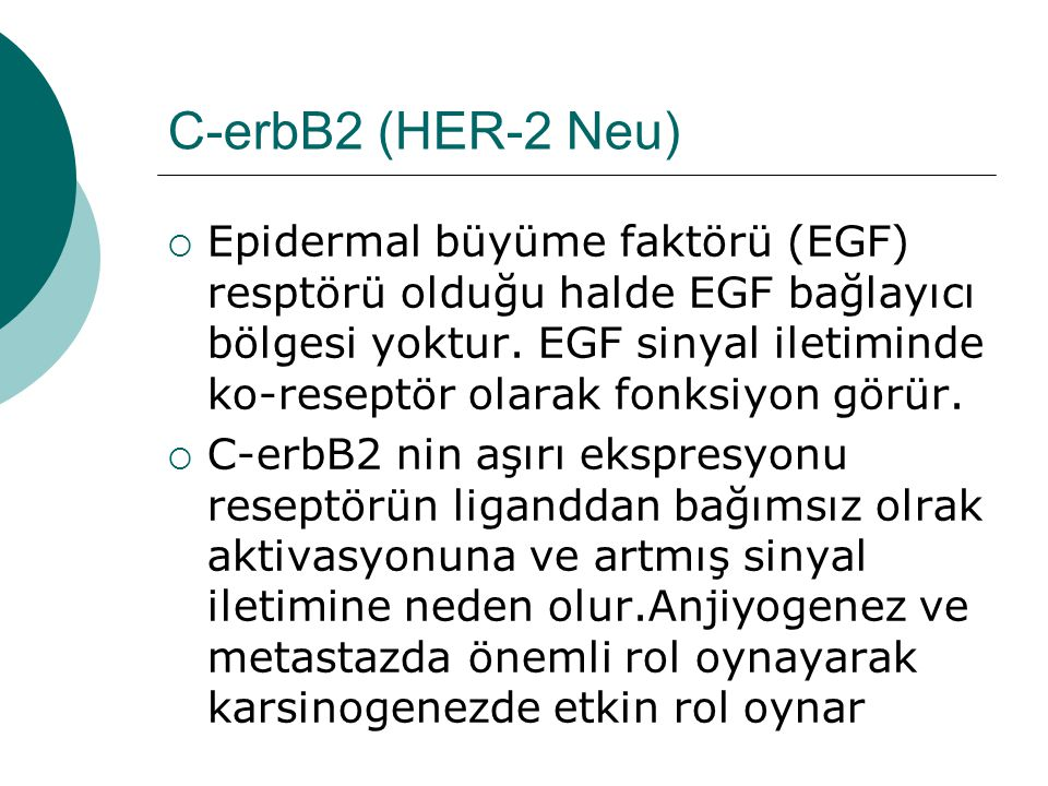 C-erbB2 (HER-2 Neu)  Epidermal büyüme faktörü (EGF) resptörü olduğu halde EGF bağlayıcı bölgesi yoktur.