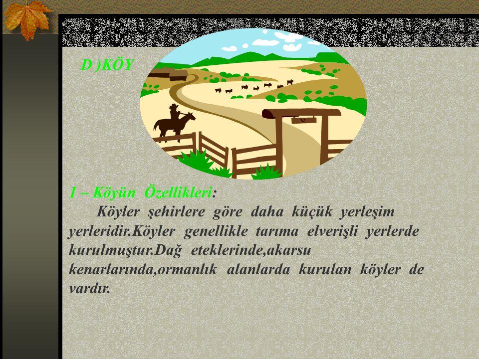 2 –Mahallenin Yönetimi: Mahalleyi muhtar yönetir.Muhtar ve ihtiyar meclisi üyeleri seçimle göreve gelirler.Muhtar mahallede oturanlara istedikleri zam