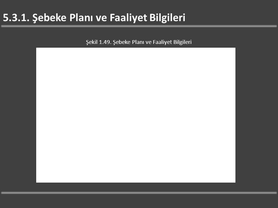 5.3.1. Şebeke Planı ve Faaliyet Bilgileri Şekil 1.49. Şebeke Planı ve Faaliyet Bilgileri