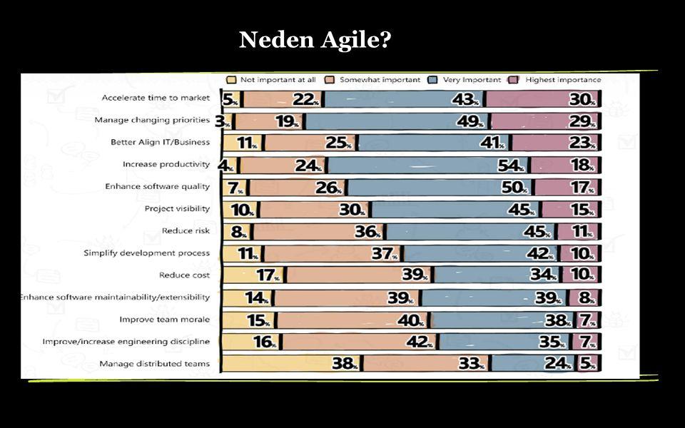 Neden Agile?