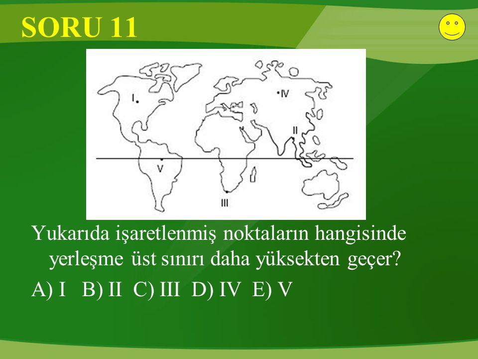 SORU 11 Yukarıda işaretlenmiş noktaların hangisinde yerleşme üst sınırı daha yüksekten geçer? A) I B) II C) III D) IV E) V