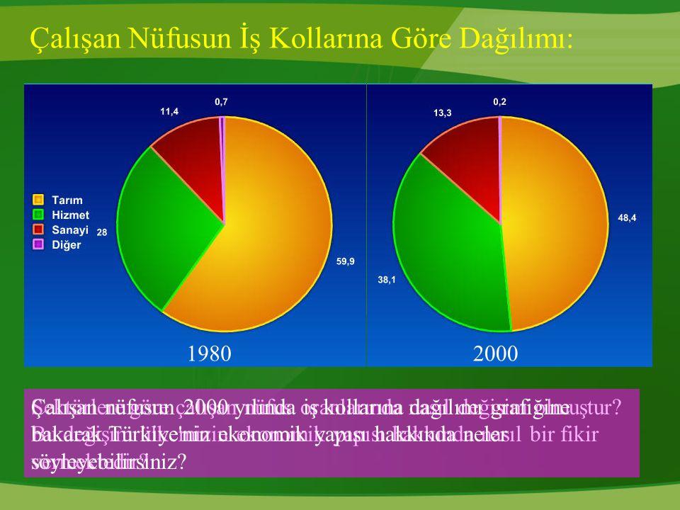 Çalışan Nüfusun İş Kollarına Göre Dağılımı: 19802000 Sektörlere göre çalışan nüfus oranlarında nasıl değişim olmuştur? Bu değişim ülkemizin ekonomik y