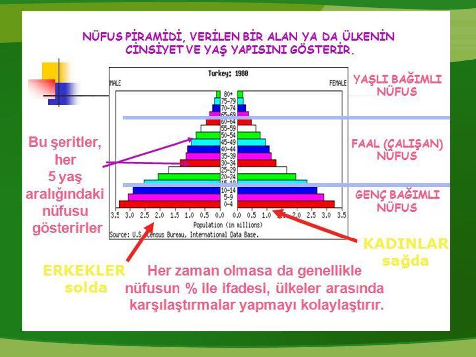 Türkiye'nin Nüfus Piramidi: Soruları cevaplandırınız Piramidin geniş tabanlı bir üçgene benzemesinin nedenleri nelerdir.