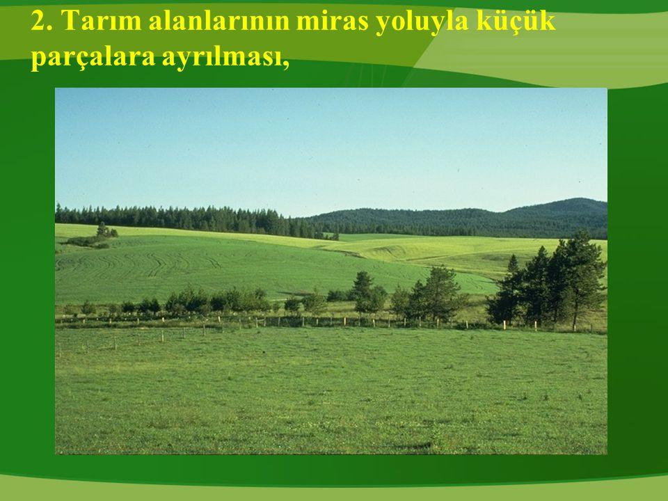 2. Tarım alanlarının miras yoluyla küçük parçalara ayrılması,