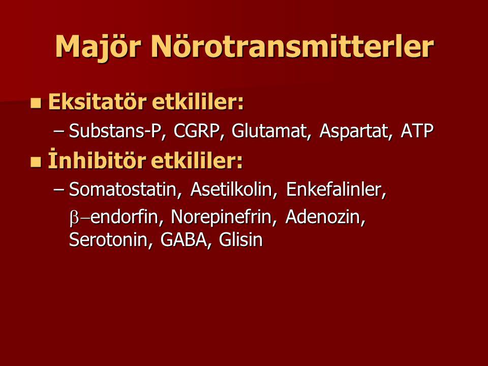 Majör Nörotransmitterler Eksitatör etkililer: Eksitatör etkililer: –Substans-P, CGRP, Glutamat, Aspartat, ATP İnhibitör etkililer: İnhibitör etkililer