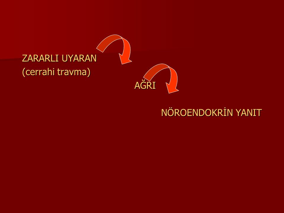 Spinal Mekanizmalar C liflerinin ardışık uyarısı arka boynuzlarda reseptif bölgenin artışı (wind-up fenomeni) C liflerinin ardışık uyarısı arka boynuzlarda reseptif bölgenin artışı (wind-up fenomeni) Spinal bölgede prostaglandin aktivasyonu Spinal bölgede prostaglandin aktivasyonu Aminoasit salınımında artış Aminoasit salınımında artış NMDA tipi glutamat reseptörlerinin aktivasyonu NMDA tipi glutamat reseptörlerinin aktivasyonu Araşidonik asit artışı ile glutamat inhibisyonu Araşidonik asit artışı ile glutamat inhibisyonu NSAİİ spinal düzeyde aminoasit metabolizması üzerinden etkili olurlar.