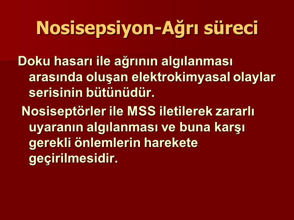 Nosisepsiyon-Ağrı süreci Doku hasarı ile ağrının algılanması arasında oluşan elektrokimyasal olaylar serisinin bütünüdür. Nosiseptörler ile MSS iletil