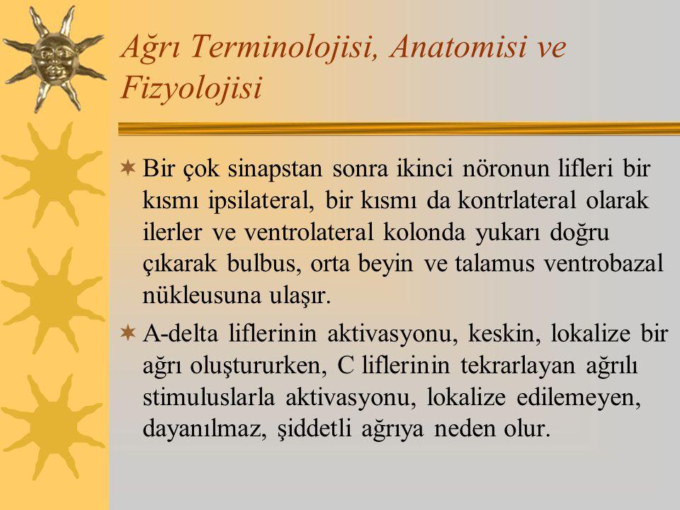Ağrı Terminolojisi, Anatomisi ve Fizyolojisi  Bir çok sinapstan sonra ikinci nöronun lifleri bir kısmı ipsilateral, bir kısmı da kontrlateral olarak