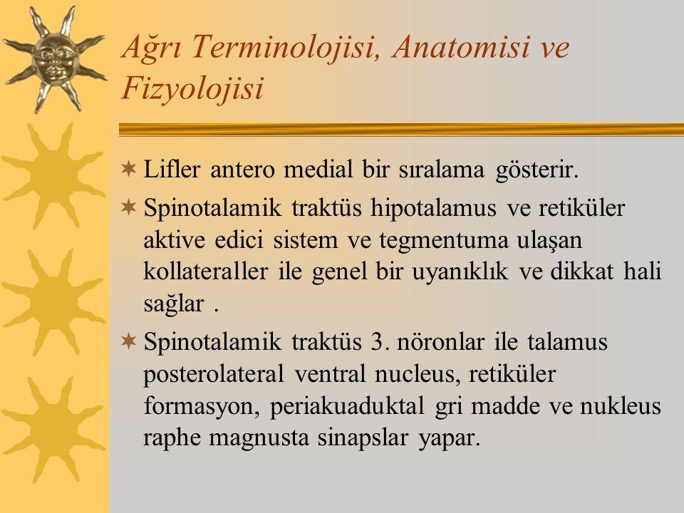 Ağrı Terminolojisi, Anatomisi ve Fizyolojisi  Lifler antero medial bir sıralama gösterir.  Spinotalamik traktüs hipotalamus ve retiküler aktive edic