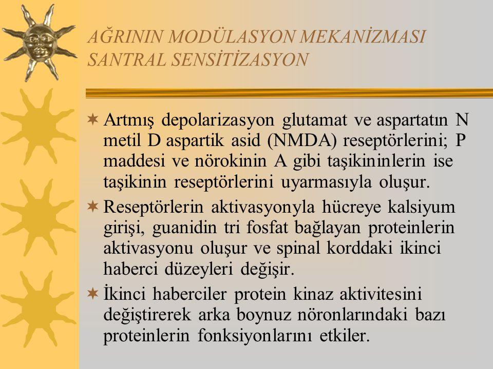 AĞRININ MODÜLASYON MEKANİZMASI SANTRAL SENSİTİZASYON  Artmış depolarizasyon glutamat ve aspartatın N metil D aspartik asid (NMDA) reseptörlerini; P m