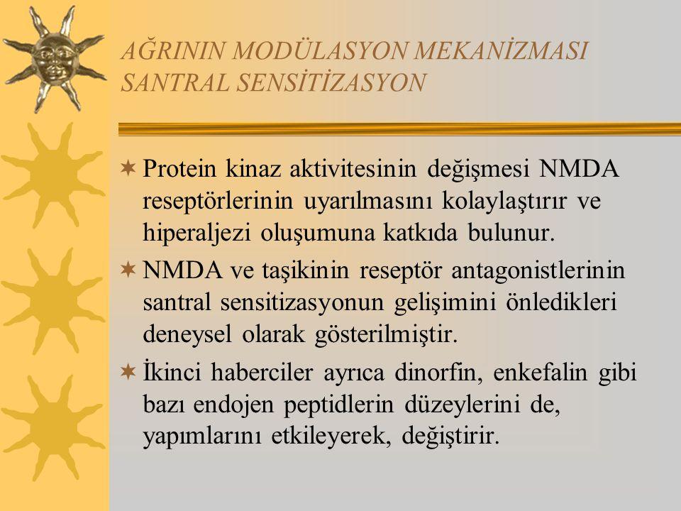 AĞRININ MODÜLASYON MEKANİZMASI SANTRAL SENSİTİZASYON  Protein kinaz aktivitesinin değişmesi NMDA reseptörlerinin uyarılmasını kolaylaştırır ve hipera
