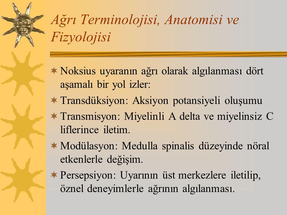 Ağrı Terminolojisi, Anatomisi ve Fizyolojisi  Noksius uyaranın ağrı olarak algılanması dört aşamalı bir yol izler:  Transdüksiyon: Aksiyon potansiye
