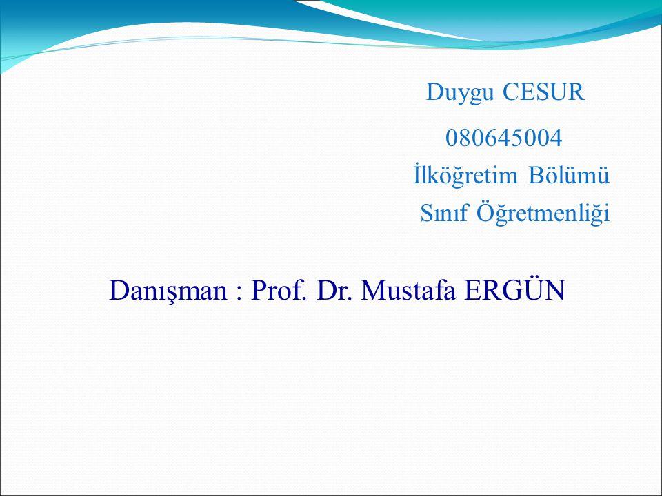 Duygu CESUR 080645004 İlköğretim Bölümü Sınıf Öğretmenliği Danışman : Prof. Dr. Mustafa ERGÜN