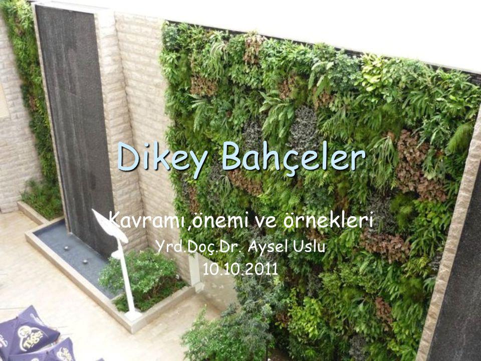 Dikey Bahçeler Kavramı,önemi ve örnekleri Yrd.Doç.Dr. Aysel Uslu 10.10.2011