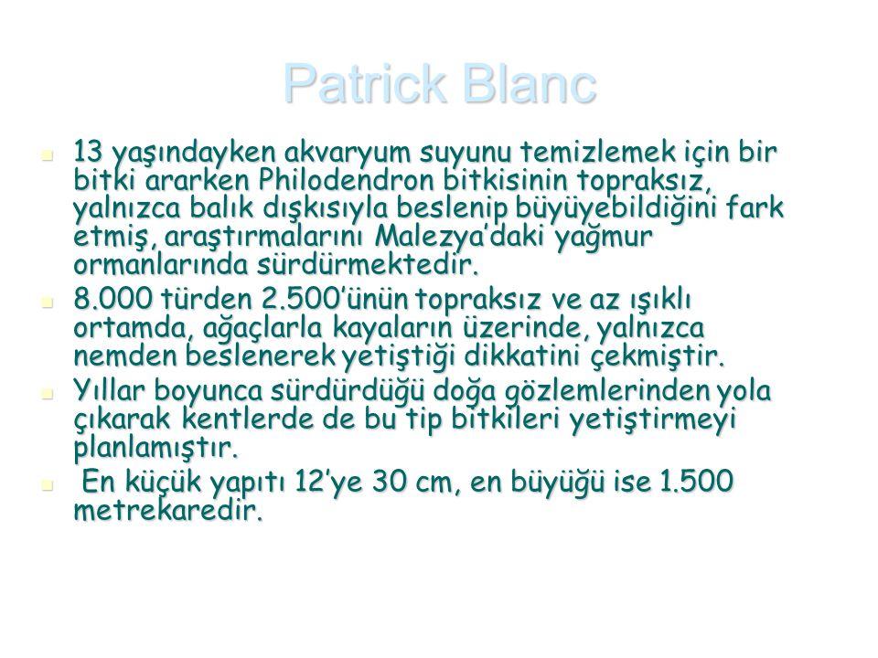 Patrick Blanc 13 yaşındayken akvaryum suyunu temizlemek için bir bitki ararken Philodendron bitkisinin topraksız, yalnızca balık dışkısıyla beslenip b