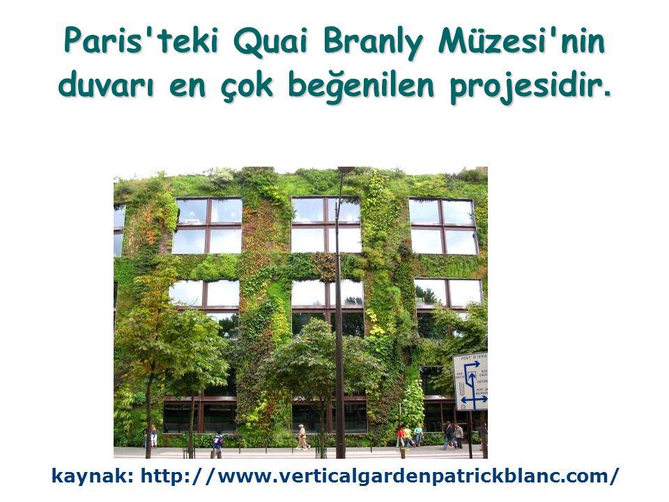 Paris'teki Quai Branly Müzesi'nin duvarı en çok beğenilen projesidir. kaynak: http://www.verticalgardenpatrickblanc.com/
