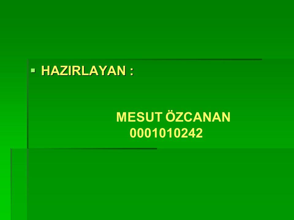 HAZIRLAYAN : MESUT ÖZCANAN 0001010242