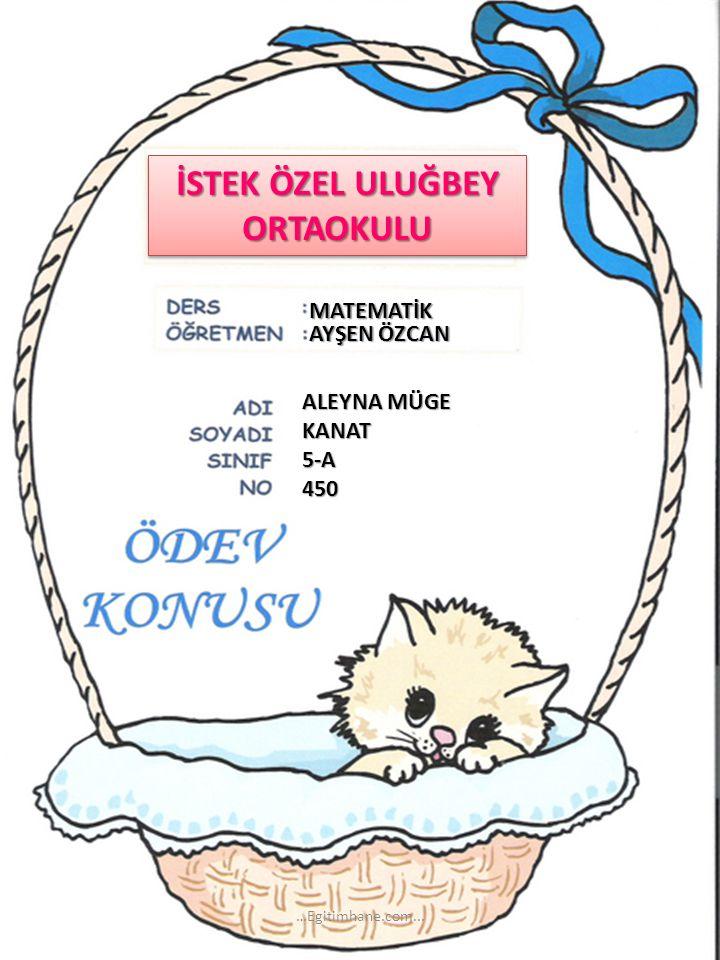 İSTEK ÖZEL ULUĞBEY ORTAOKULU MATEMATİK AYŞEN ÖZCAN ALEYNA MÜGE KANAT5-A450 …Egitimhane.com...