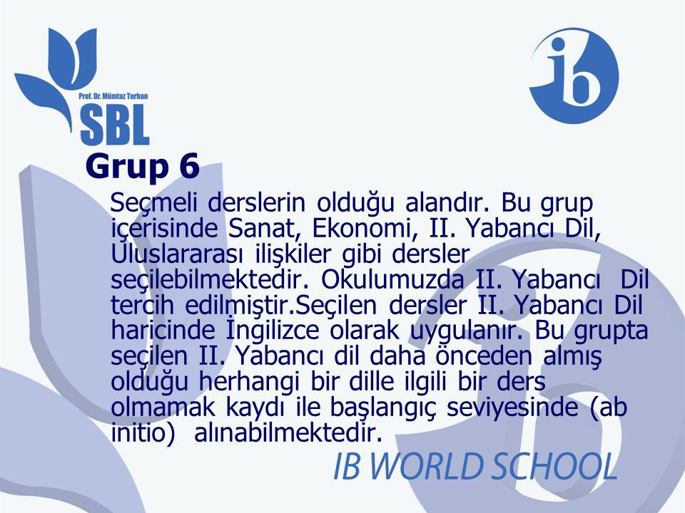 Grup 6 Seçmeli derslerin olduğu alandır. Bu grup içerisinde Sanat, Ekonomi, II. Yabancı Dil, Uluslararası ilişkiler gibi dersler seçilebilmektedir. Ok