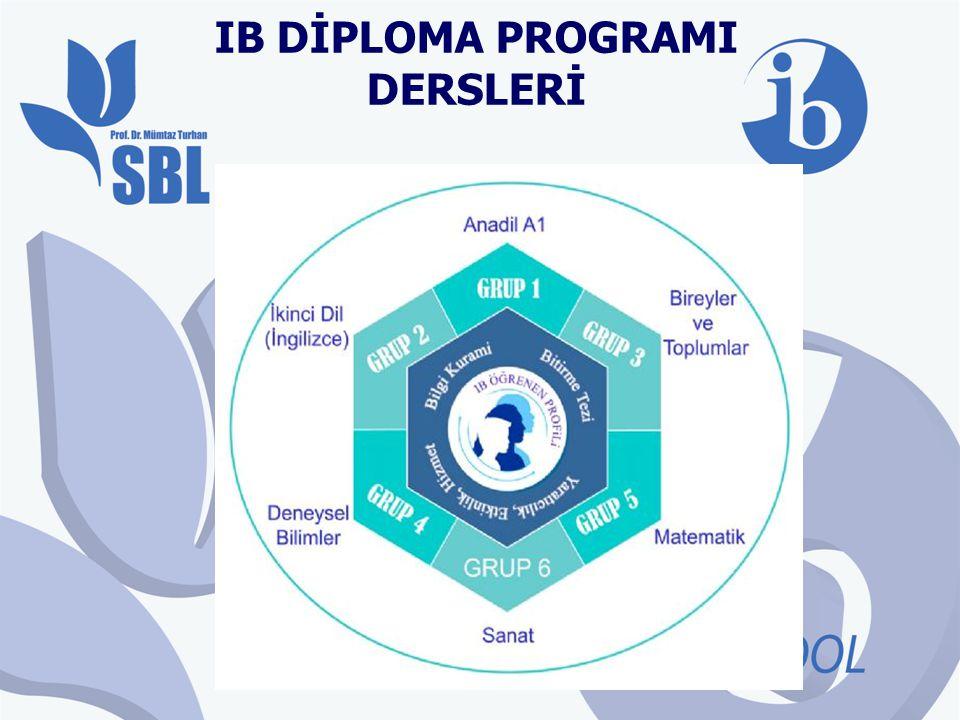 Dersler Yüksek Düzey (High Level) ve Standart Düzey (Standard Level) olmak üzere iki farklı düzeyde alınmaktadır.