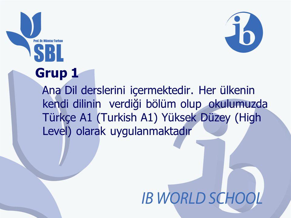 Grup 1 Ana Dil derslerini içermektedir. Her ülkenin kendi dilinin verdiği bölüm olup okulumuzda Türkçe A1 (Turkish A1) Yüksek Düzey (High Level) olara