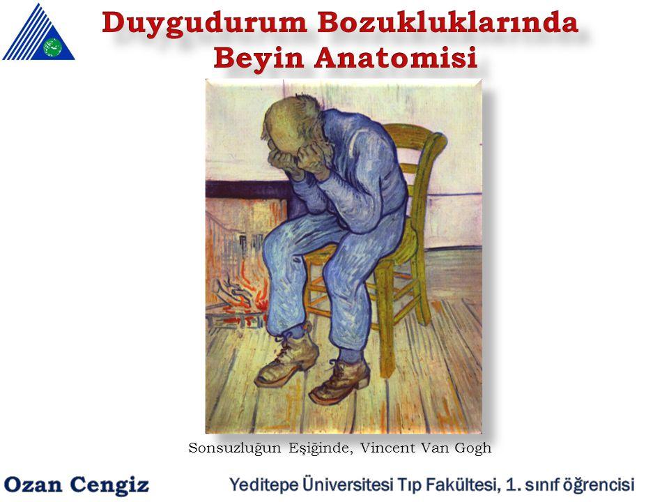 Sonsuzluğun Eşiğinde, Vincent Van Gogh