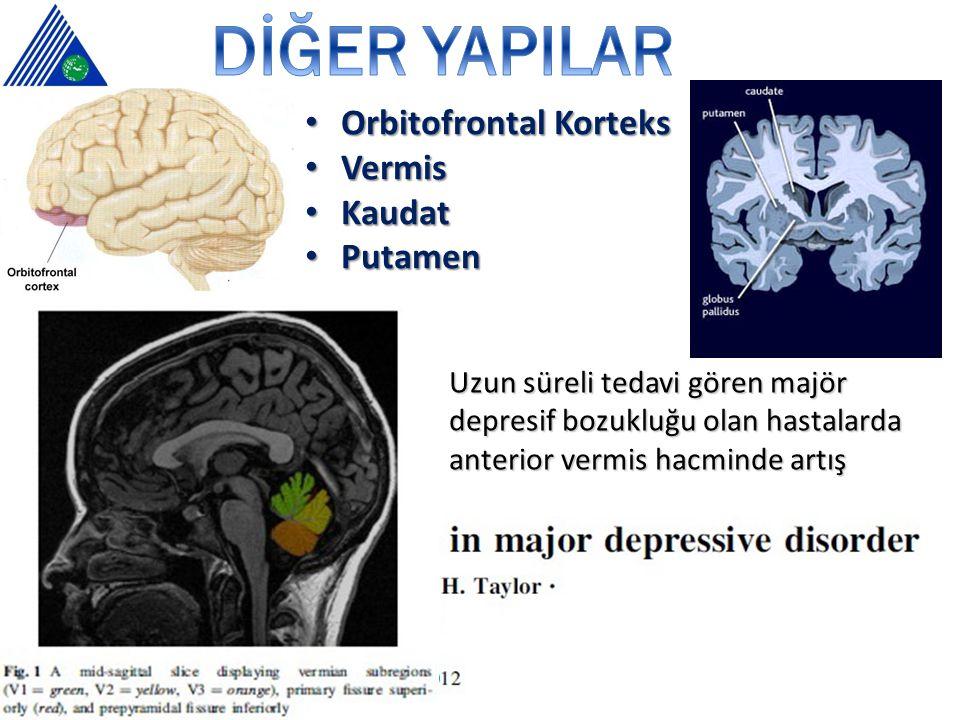Orbitofrontal Korteks Orbitofrontal Korteks Vermis Vermis Kaudat Kaudat Putamen Putamen Uzun süreli tedavi gören majör depresif bozukluğu olan hastalarda anterior vermis hacminde artış