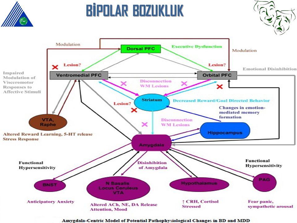 B İ POLAR BOZUKLUK OFK ve hippocampus hacminde azalma PFK aktivitesinde azalma Kortikolimbik disregülasyon