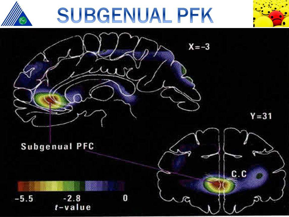 MDD hastalarında gri cevher hacminde azalma MDD hastalarında gri cevher hacminde azalma Hacim kaybı nöronlardan değil glia hücrelerinin azalmasından kaynaklı Hacim kaybı nöronlardan değil glia hücrelerinin azalmasından kaynaklı Kortikal hacim azalmasına paralel metabolik aktivite düşüşü Kortikal hacim azalmasına paralel metabolik aktivite düşüşü Uzun süreli antidepresan tedavisiyle hacim artışı Uzun süreli antidepresan tedavisiyle hacim artışı Drevets WC, Price JL, Simpson JR Jr, Todd RD, Reich T, Vannier M, Raichle ME.