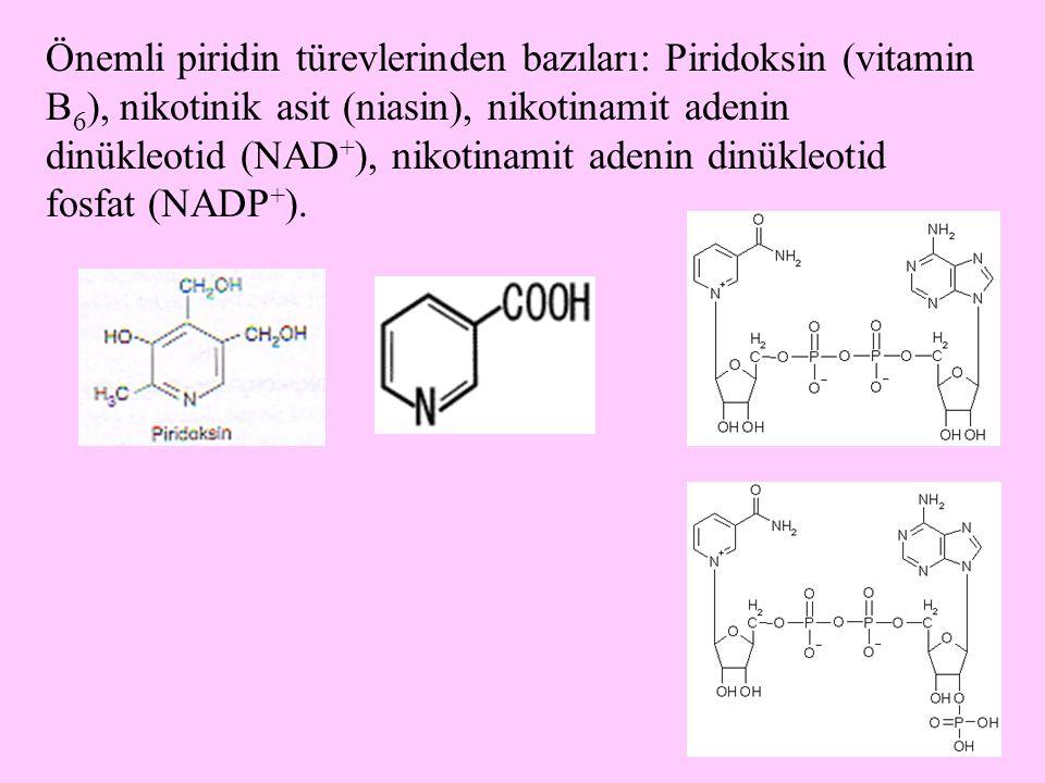 19 Önemli piridin türevlerinden bazıları: Piridoksin (vitamin B 6 ), nikotinik asit (niasin), nikotinamit adenin dinükleotid (NAD + ), nikotinamit ade
