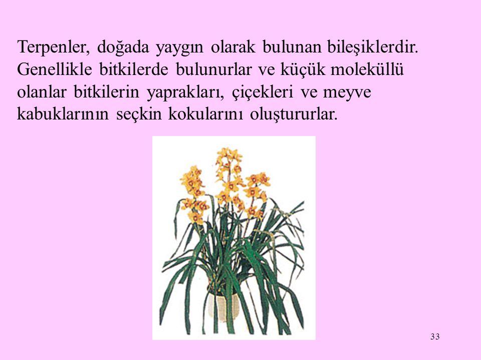 33 Terpenler, doğada yaygın olarak bulunan bileşiklerdir. Genellikle bitkilerde bulunurlar ve küçük moleküllü olanlar bitkilerin yaprakları, çiçekleri