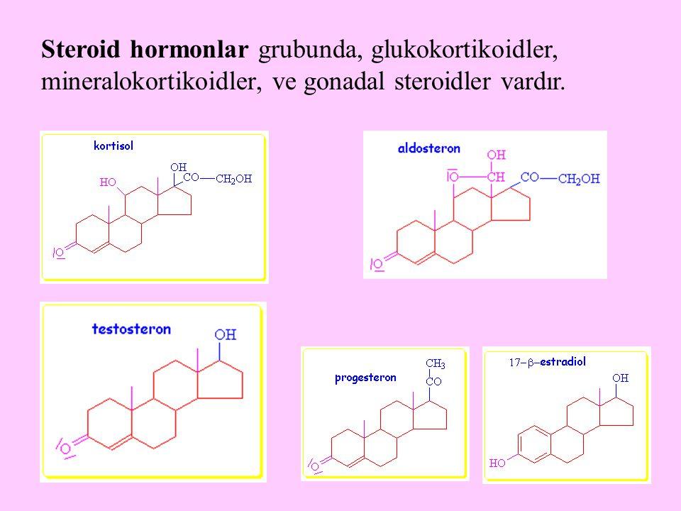 39 Steroid hormonlar grubunda, glukokortikoidler, mineralokortikoidler, ve gonadal steroidler vardır.