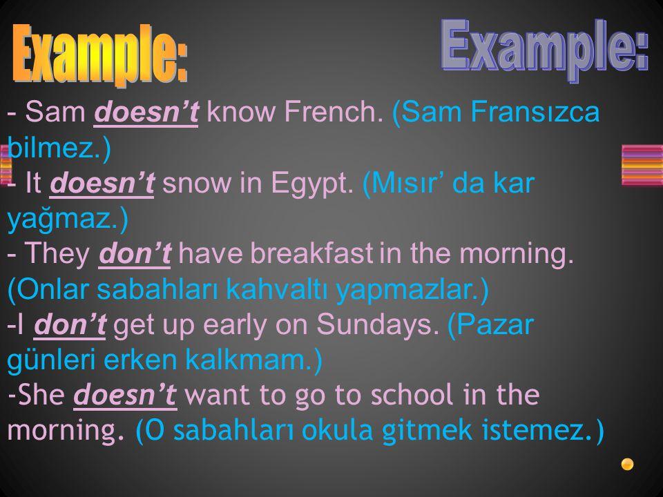 - Sam doesn't know French.(Sam Fransızca bilmez.) - It doesn't snow in Egypt.