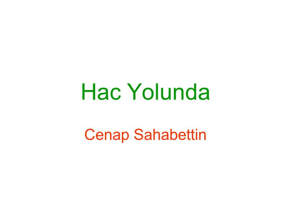Hac Yolunda Cenap Sahabettin
