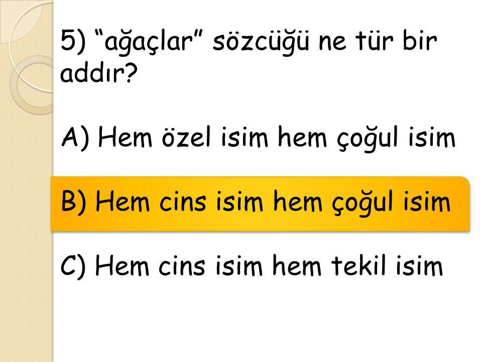 """5) """"ağaçlar"""" sözcüğü ne tür bir addır? A) Hem özel isim hem çoğul isim B) Hem cins isim hem çoğul isim C) Hem cins isim hem tekil isim"""