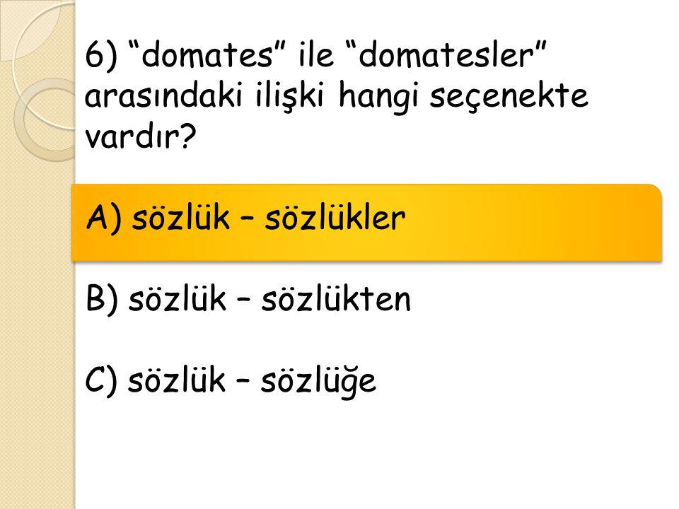 """6) """"domates"""" ile """"domatesler"""" arasındaki ilişki hangi seçenekte vardır? A) sözlük – sözlükler B) sözlük – sözlükten C) sözlük – sözlüğe"""
