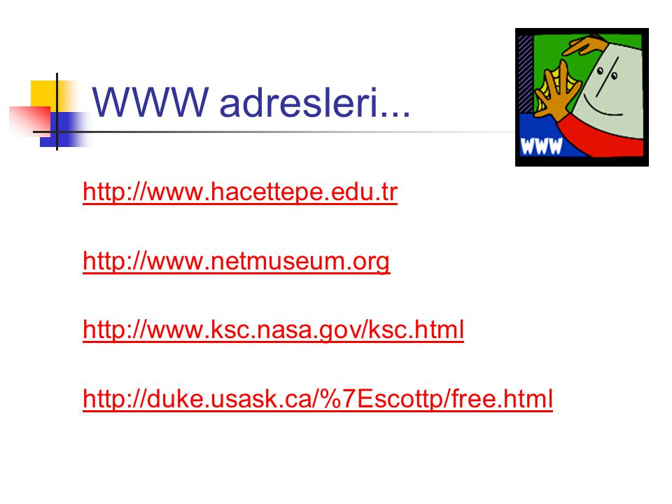 WWW adresleri...
