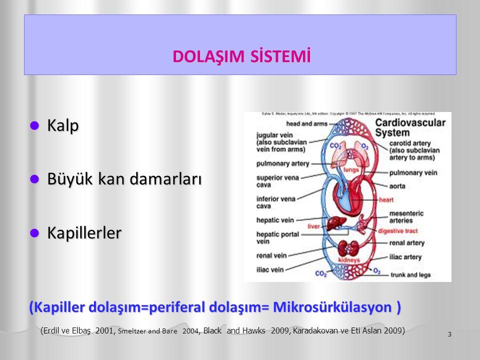 DOLAŞIM SİSTEMİ DOLAŞIM SİSTEMİ Kalp Kalp Büyük kan damarları Büyük kan damarları Kapillerler Kapillerler (Kapiller dolaşım=periferal dolaşım= Mikrosü