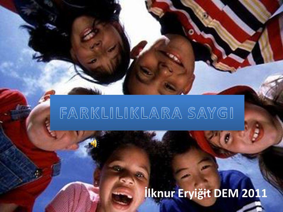 İlknur Eryiğit DEM 2011