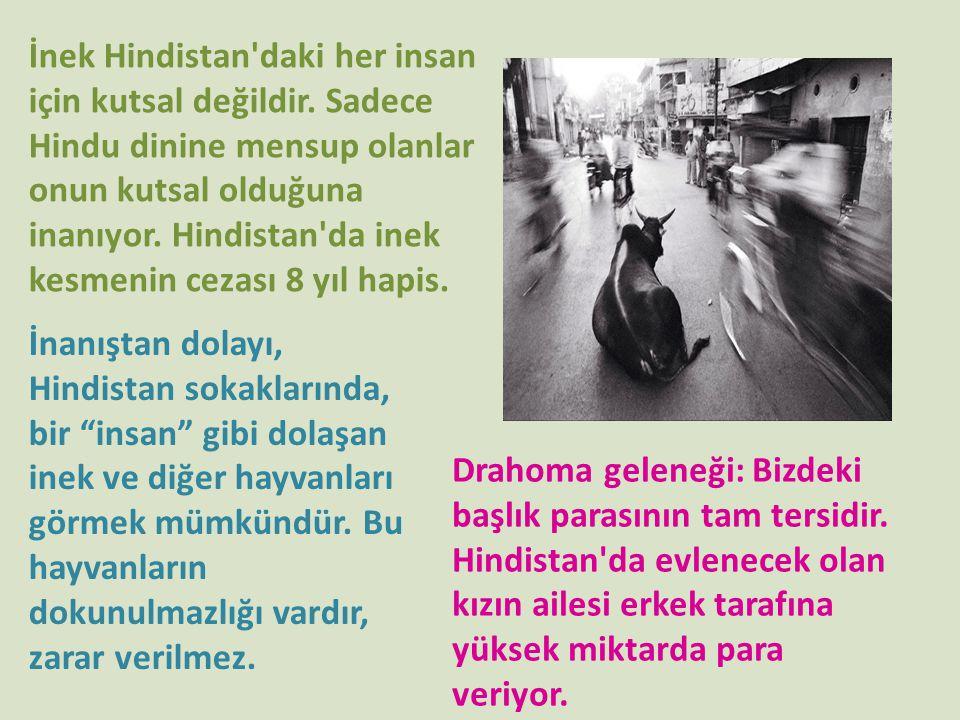 İnek Hindistan'daki her insan için kutsal değildir. Sadece Hindu dinine mensup olanlar onun kutsal olduğuna inanıyor. Hindistan'da inek kesmenin cezas