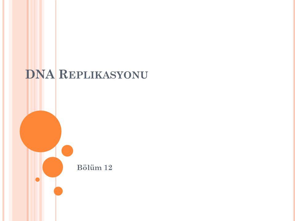 DNA R EPLIKASYONU Bölüm 12